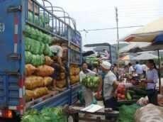 天津市西青区当城蔬菜批发市场图片